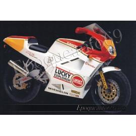MITO LUCKY EXPLORER ANNÉE 1991 -