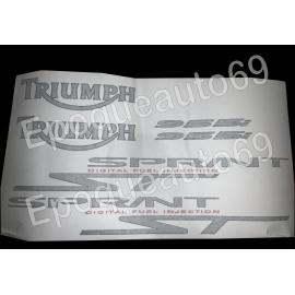 Autocollants Stickers triumph sprint st 955i année 2002