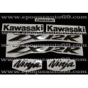 Autocollants - Stickers KAWASAKI ZX-12R année 2004 version argent