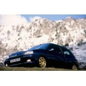 Renault clio williams / 16s